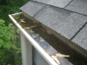 Your gutters may look like this!